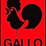 GALLOレーベル・カタログ追加公開いたしました!